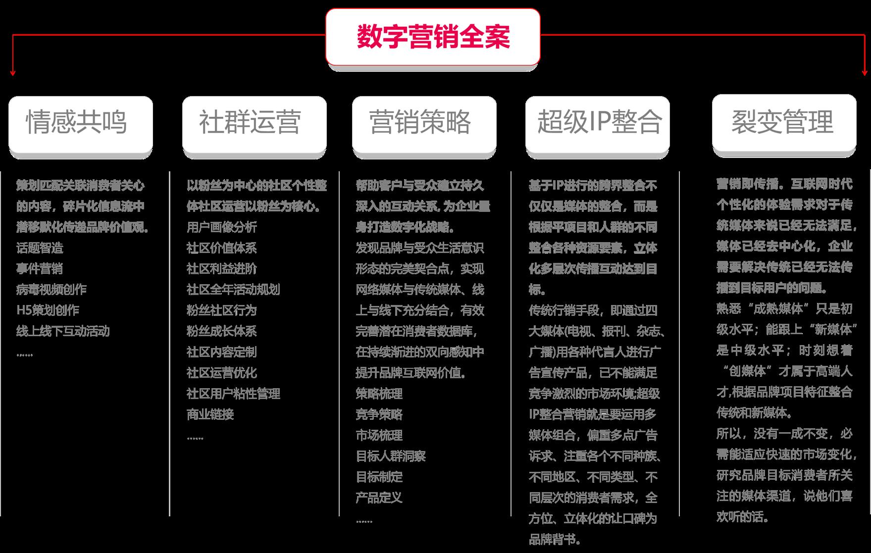 全网整合营销&数字化品牌服务标准